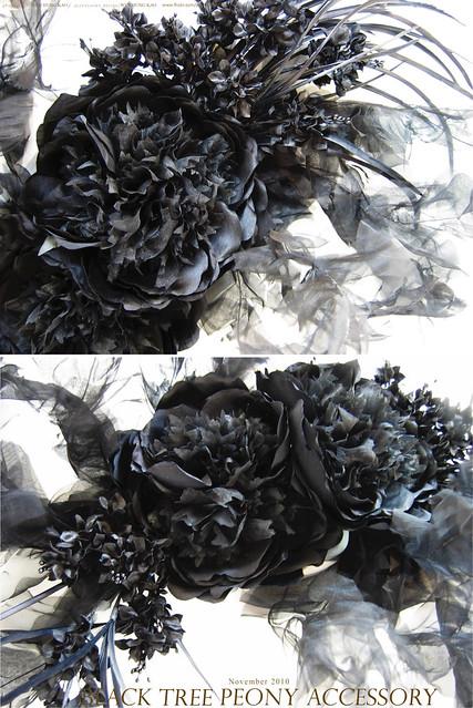 黑色牡丹花饰特写 作者
