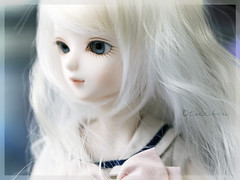 Fleur de lis (TURBOW) Tags: asian doll pale bjd resin fleurdelis limitededition bf abjd ws tf bluefairy balljointeddoll tinyfairy leekeworld minoruworld beautywhiteskin dollgawig kanisaugenglasseyes limitedbjasmine