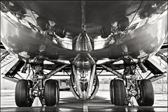 747 (heavenuphere) Tags: bw reflection netherlands museum airplane europe aircraft wheels nederland boeing boeing747 themepark 747 jumbojet lelystad aerospace aviodrome 1750mm flightsimulatorweekend