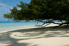 Kalapathar Beach, Havelock Island (arunswami) Tags: sea india andamans havelockisland kalapatharbeach