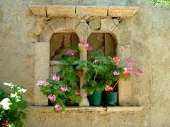 flowers in ancient window (ale*theia) Tags: windows summer flower window rock stone island ancient rocks stones sommer fenster wand struktur insel steine greece griechenland chora cyclades felsen kykladen