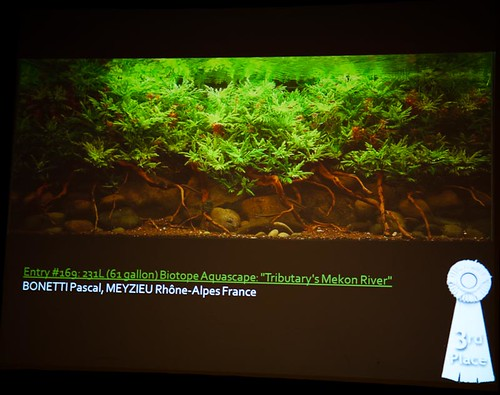 2010 AGA Contest: Biotope 3rd Place