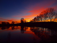 MIRROW OF TREE IN THE MORNING (hans 1960) Tags: blue trees red sky orange reflection rot water silhouette clouds sunrise germa