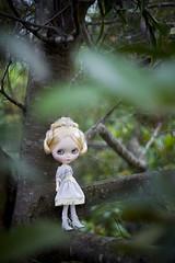 do you believe in fairy tales?