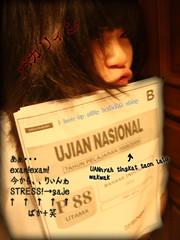 mariya nishiuchiの壁紙プレビュー