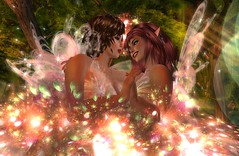 When Fairies Meet