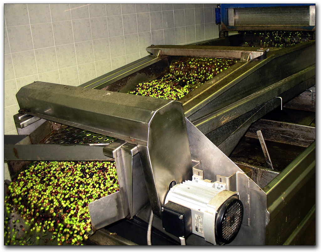 Step 2 : Cleaning the olives