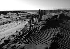 Sand Dunes & Fence B&W (.annajane) Tags: ocean uk shadow sea england bw beach silhouette fence coast sand dune merseyside formby irishsea