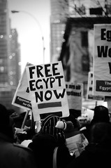 Cairo demonstration for Democracy in Egypt NYC 2.1.11 (JustinTshockley.com) Tags: street justin ny news youth t freedom 1 israel democracy riot manhattan palestine muslim rally protest egypt first demonstration cairo arab times february activism protests activist freelance shockley