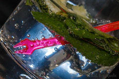 take a mojito and relax (benno.dierauer) Tags: macrounlimited macro macromondays canon70d mojito relaxation