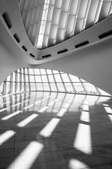 Angie McMonigal Photography-6773-Edit (Angie McMonigal) Tags: abstract milwaukee milwaukeeartmuseum abstractarchitecture architecture santiagocalatrava