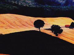 P4180810 paesaggio marchigiano (gpaolini50) Tags: landscape luce colore composizione photoaday photography photographis photographic photo phothograpia pretesti emotive esplora explore explored emozioni explora