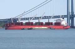 SBI CRONOS in New York, USA. June, 2017 (Tom Turner - NYC) Tags: sbicronos ship vessel anchor anchored anchorage narrows stapleton water waterway bay tomturner red crimson scarlet cargo bulker crane cranes statenisland newyork nyc bigapple usa unitedstates marine maritime pony port harbor harbour transport transportation