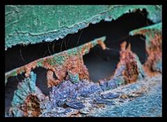 rust (Sally E J Hunter) Tags: toronto green rust distillery moo1
