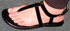 aapl studded glad 04mor (florida sandalman) Tags: thong barefoot sandal strappy gladiator