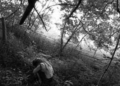 Day 71 .hide. (Michelle Elaine.) Tags: portrait blackandwhite bw reflection oneaday dreadlocks forest self fence relax quiet sad small bottom emo picasa reflect hide sp alberta barbedwire rest resting 365 cry relaxation 1740mm fetal fetalposition selfie project365 365days canon40d