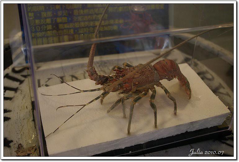 金車鮮蝦 (17)