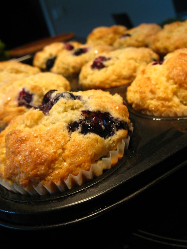 Buttermilk blueberry cupcakes