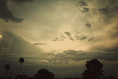 south. (annaK.mac Photography) Tags: trees arizona color yellow clouds south shapes silhouettes shades monsoon coloring depth monsoonseason