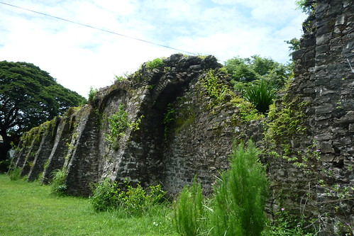 Pindangan Ruins - La Union Church Ruins (9)