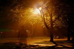 The Ghost of Holcomb Street (John M. Kennedy) Tags: street camera ghost captured streetscene johnkennedy saginaw saginawmichigan colorphotoaward holcombstreet