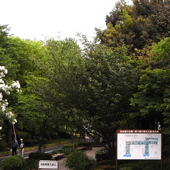 Sendaihorikawa Park