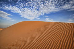 Desert Sand Texture HDR - Explore Front Page (TARIQ-M) Tags: sky cloud texture ripple explore ripples frontpage riyadh saudiarabia hdr canonefs1855 desertsand canon400d panoramafotogrfico platinumpeaceaward thepowerofnow