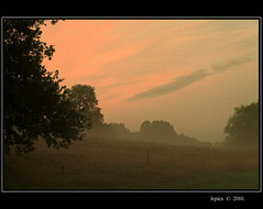 Autumns Breath. (Picture post.) Tags: autumn trees sky mist green nature clouds sunrise landscape paysage arbre soe brume autumnmorning photographyrocks mywinners platinumheartaward spiritofphotography flickraward mygearandmepremium mygearandmebronze mygearandmesilver