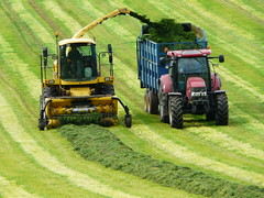 P1360014 Silage Harvesting (SomeBlokeTakingPhotos) Tags: summer tractor landscape countryside stripes derbyshire peakdistrict 1001nights silage harvesting wow1 wow2 earthwindfire kartpostal flickraward 100commentgroup silageharvester 1001nightsmagiccity mygearandme mygearandmepremium mygearandmebronze mygearandmesilver haybaleandstubble aboveandbeyondlevel1 flickrstruereflection1 flickrstruereflection2