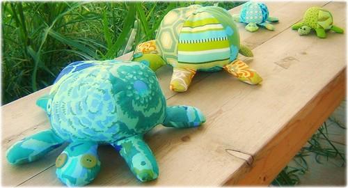 Tortoise 035