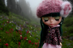 Summer, please stay (jessi.bryan) Tags: doll paradise meadows pam blythe mtrainier sewingpattern alpline princessalamode googoojue blythesimplicitypattern