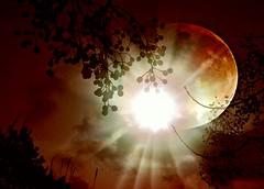 Hasta el sol juega con la luna en un fascinante... (conejo721*) Tags: sol argentina atardecer eclipse amor luna palabras mardelplata sentimiento poesa poema conejo721
