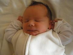 My Nephew Austin