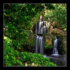 John Oldham Park, Perth WA (HDR) (Nicholas Woods) Tags: trees water beautiful landscape nikon hdr d90