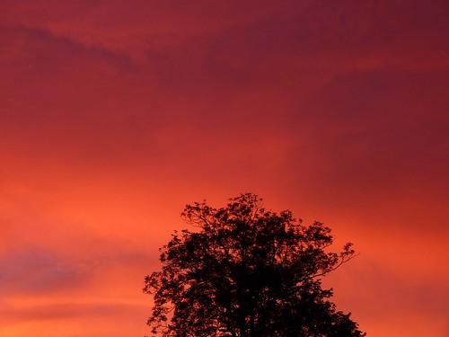 Sunset in Feldbrunnen, Switzerland