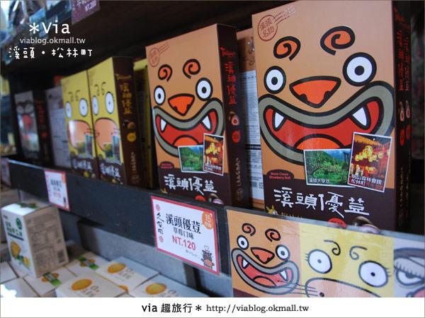 【南投】台灣,妖怪出沒?!來溪頭妖怪村-松林町抓妖吧!29