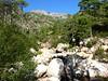 Confluence Finicione/Ricu : le ruisseau de Ricu vers Quercitella et Samulaghja