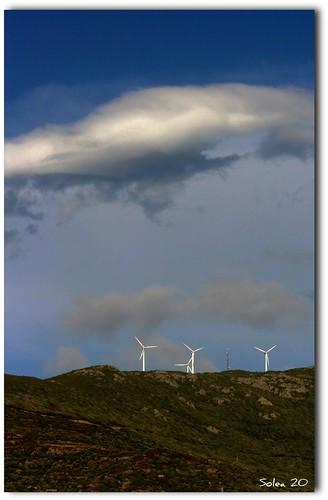 Filles du vent