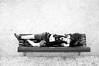 (...storrao...) Tags: blackandwhite bw portugal girl garden bench nikon lisboa banco jardim photowalk laying lx rapariga d90 deitada storrao sofiatorrão nikond90bw worldwidephotowalk2010 wwpw2010 3rdworldwidephotowalk spedroalcântaragarden spedroalcântara