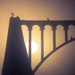 Sunrise (96dpi) Tags: bridge birds silhouette sunrise square crow crows vgel brcke sonnenaufgang krhe quadrat krhen