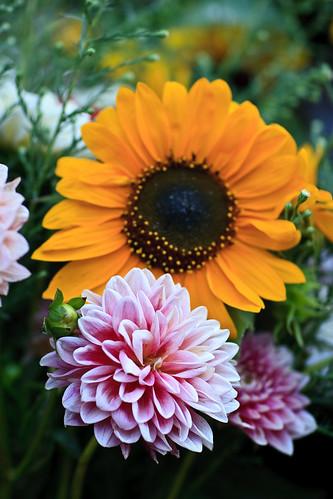 Market Flowers-1