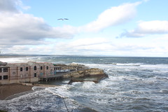 Where the aquarium meets the sea (Sarah Ross photography) Tags: uk greatbritain sea cold water lines point scotland vanishingpoint waves horizon perspective windy standrews distance far exchange depth semester studyabroad inthedistance sarahr89 sarahrossphotography