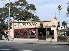 Vineyard, St KIlda