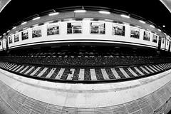 Fish-Train (William Perugini) Tags: canon william fisheye stazione treno binari wwwwilliamperuginicom