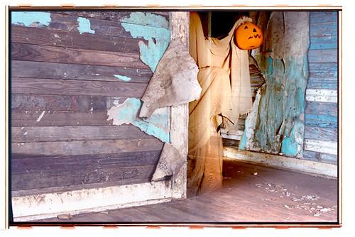 Hallowe'en #7 - Halloween greeting cards by bindlegrim aka Robert Aaron Wiley  (2004)