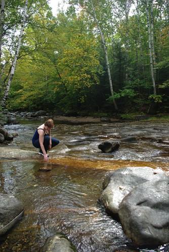 Upstream at Screw Auger Falls