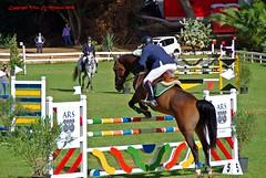 (supervito) Tags: italia pentax palermo cavalli sicilia fantini parcodellafavorita supervito campoaostacoli