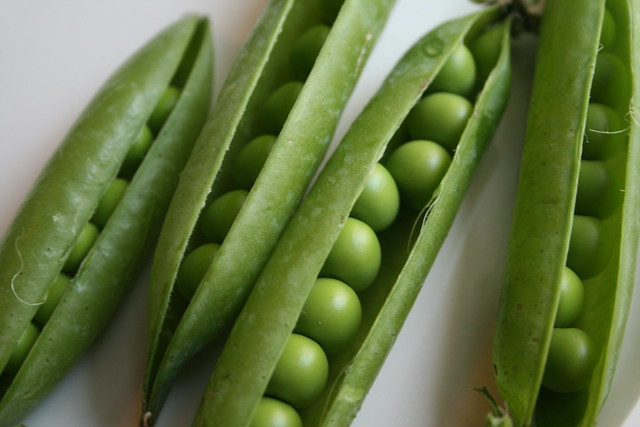 cute peas in pods