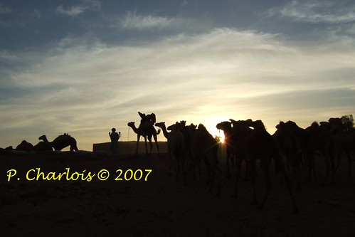 Le temps du désert, Mauritanie