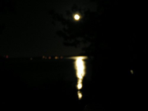 Moon & Reflection